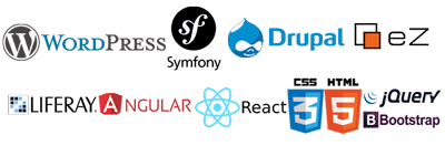 Wordpress, Drupal, Angular, React